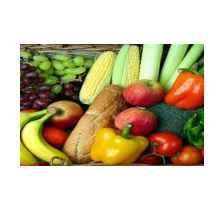 学校食堂蔬菜配送厂家