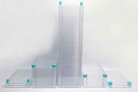 10层细胞工厂批发