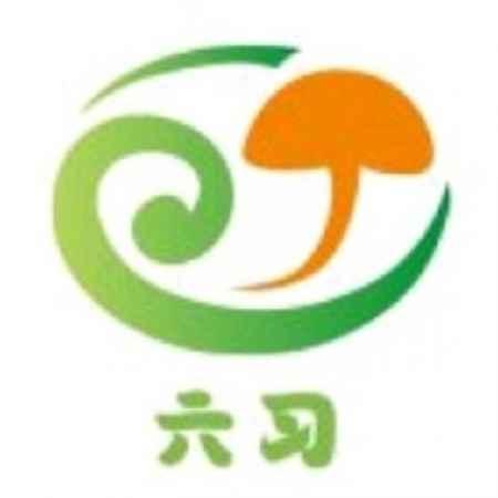 蘑菇种植技术加盟