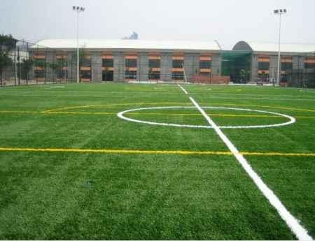 足球场人造草