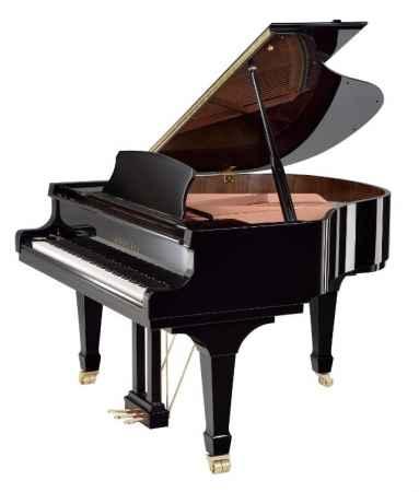 福建钢琴代理