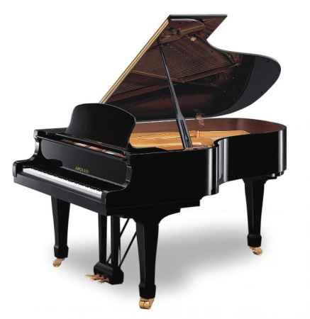 福建阿波罗钢琴